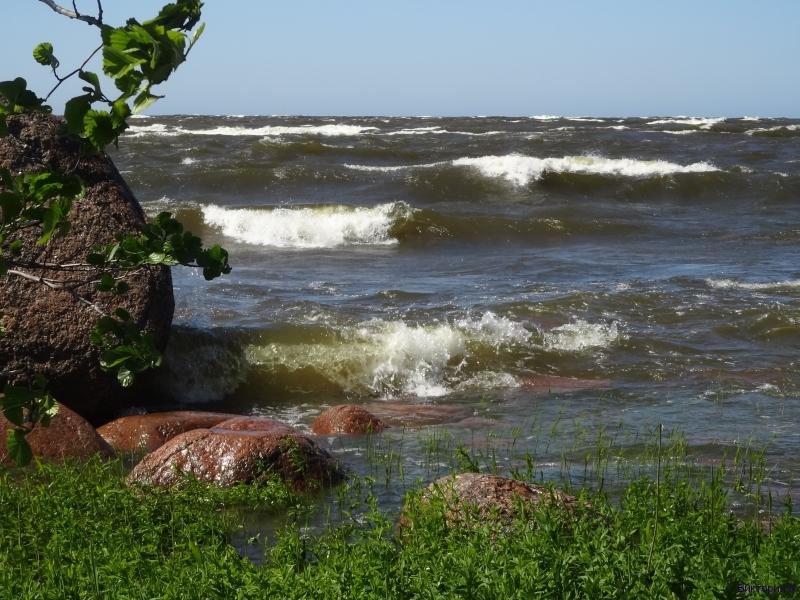 Волны Финского залива 3