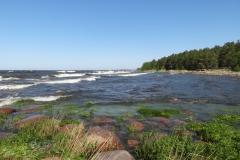 Волны Финского залива 1