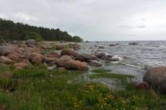 Камни на финском заливе