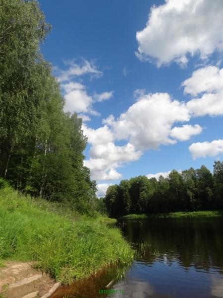 Берег реки Оять