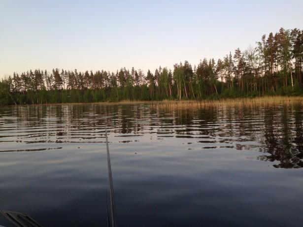 Берег Высокинского озера