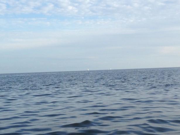 Парусники в Финском заливе