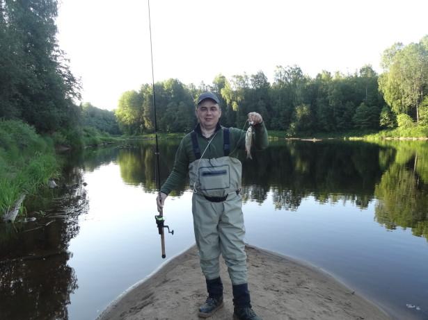 Голавль на реке Оять