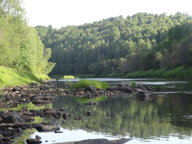 Ловля голавля река Оять