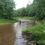 Рыбалка на реке Савинка