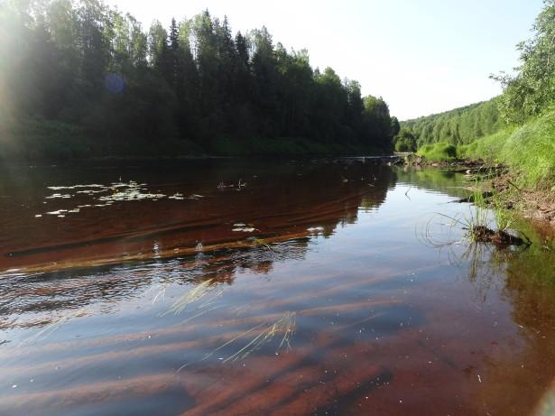 Сплав леса по реке Оять