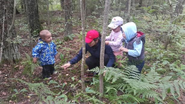 дети изучают лес