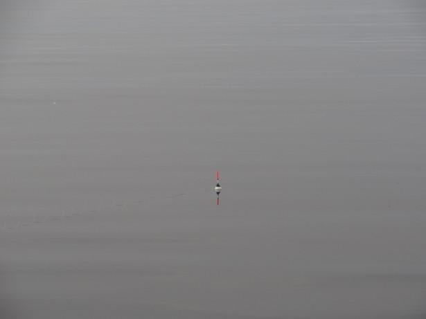 Поплавок на Ладожском озере