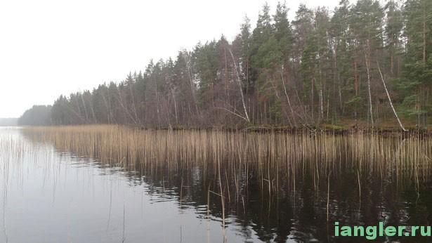 озеро Высокинское
