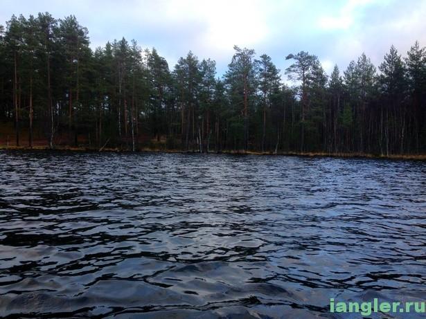 Мамонтовское озеро
