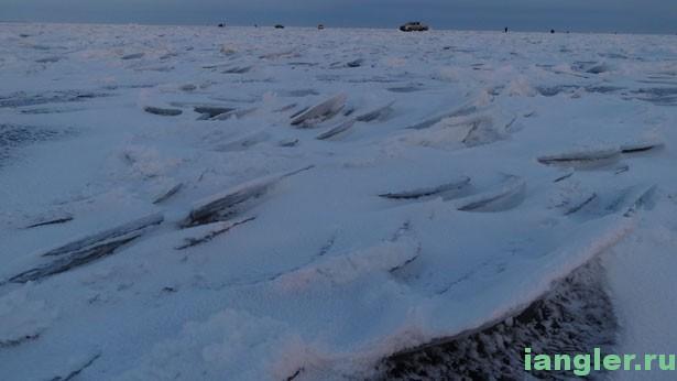Чешуя на льду