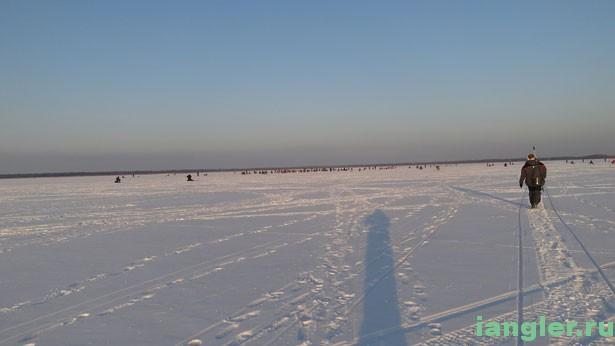 толпа рыбаков на льду