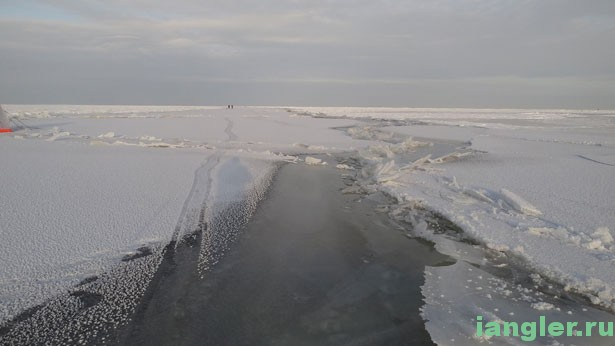Свежая трещина на льду