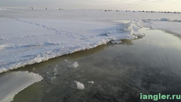 Живая трещина на льду