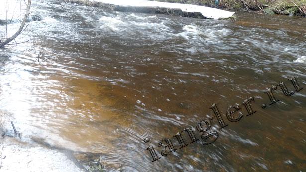 Река с чистой водой
