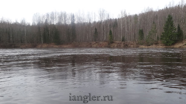 Весенний паводок на реке