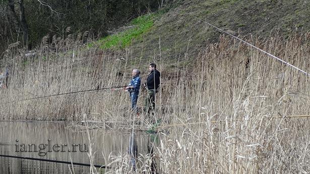 Рыбалка на Волхове весной