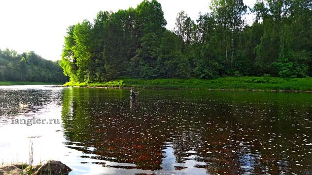 Рыбалка нахлыстом на Ояти