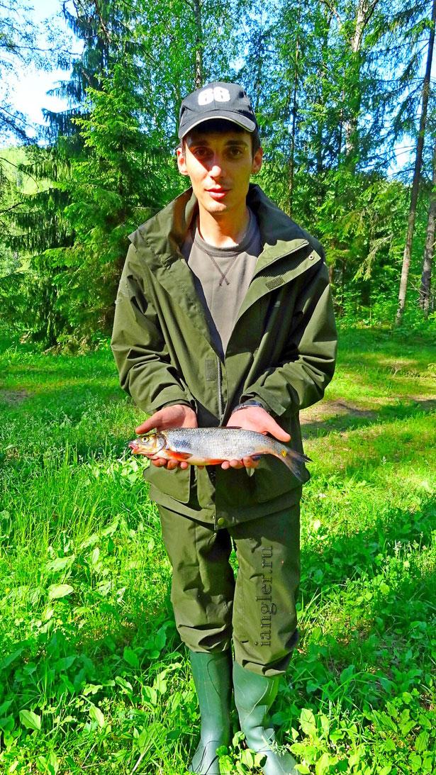 рыба Сырть