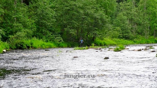 Рыбалка на дикой реке