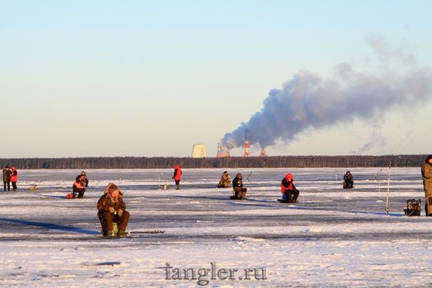 Рыбалка на судака на финском заливе