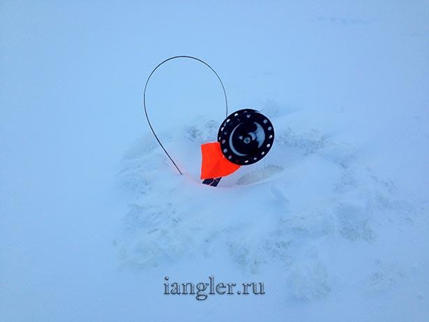 жерлица в снегу