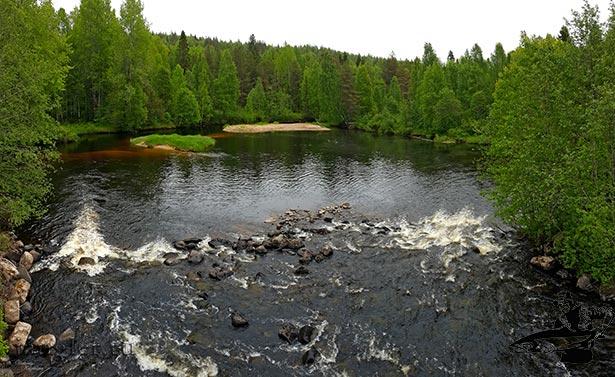 Река Кумса