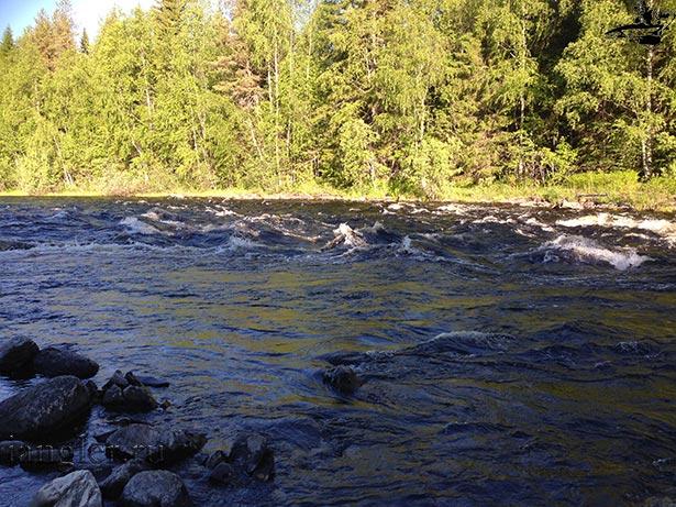 Река Лужма