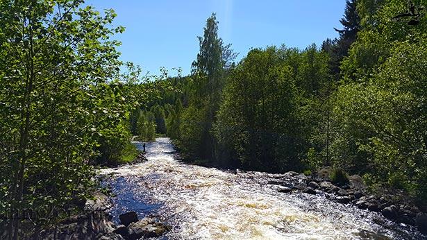 Река Остер