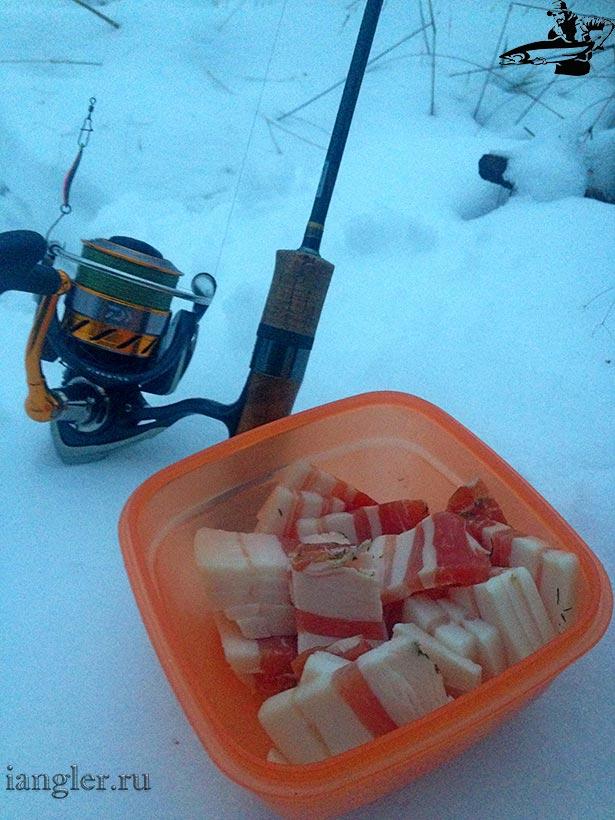 сало на рыбалке